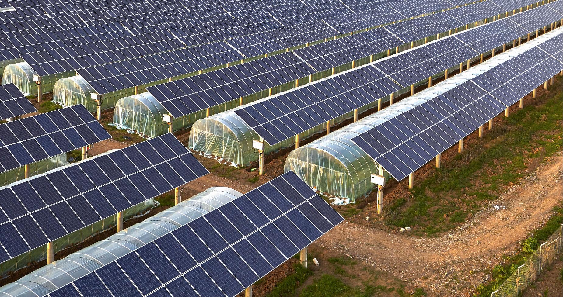 Instalación de placas solares fotovoltaicas junto con invernaderos para agricultura..
